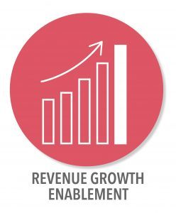 Revenue Growth Digital Transformation Consulting Services